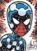 17Nov11_Cosmic_SpiderMan