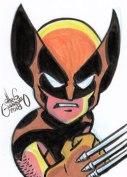 18Mar22_Wolverine