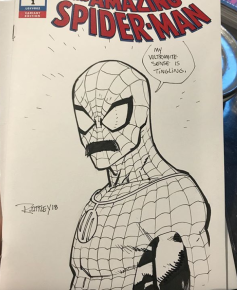 Invincible Spider-Man