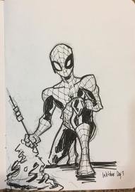 SpiderRoast